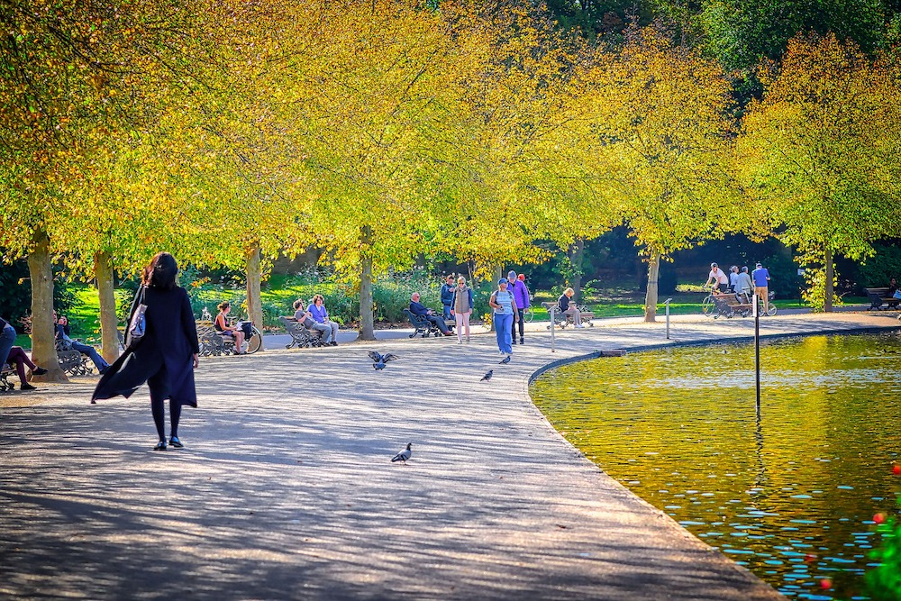 Autumn in London - Leaf-Peeping